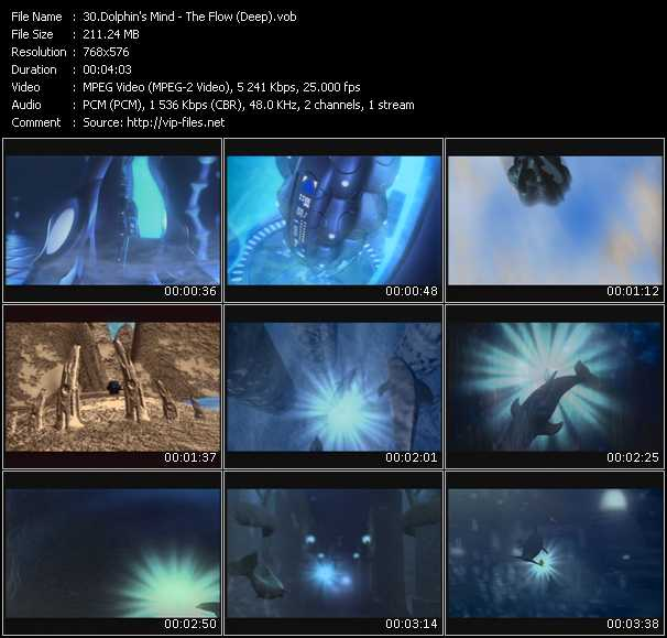 Dolphin's Mind video screenshot