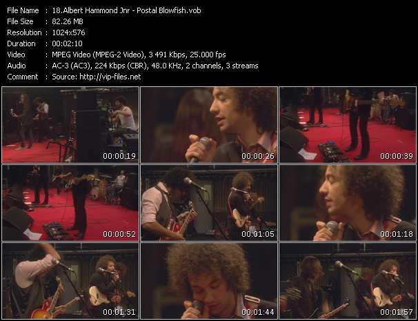 Albert Hammond Jnr video screenshot