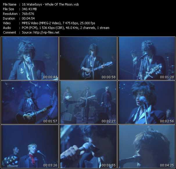 Waterboys video screenshot