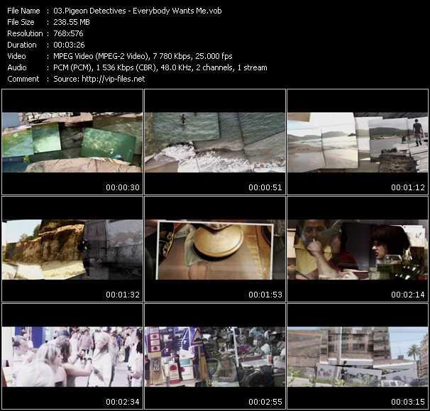 Pigeon Detectives video screenshot