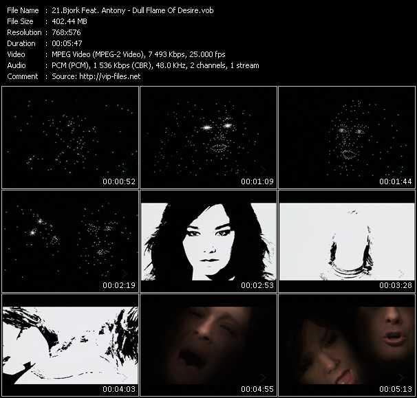 Bjork Feat. Antony video screenshot