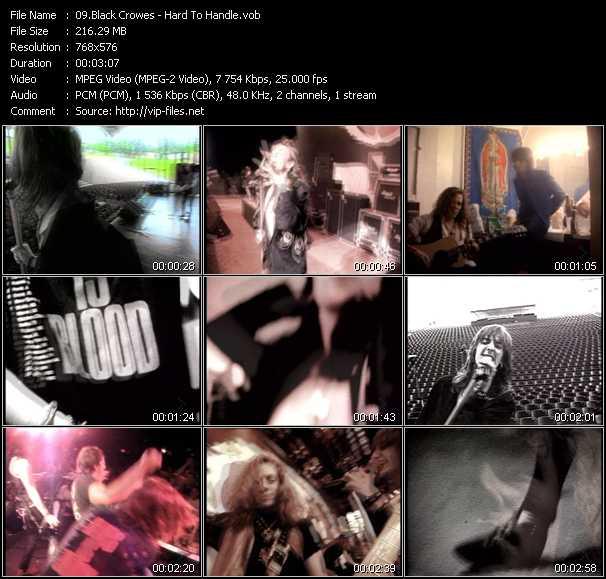Black Crowes video screenshot