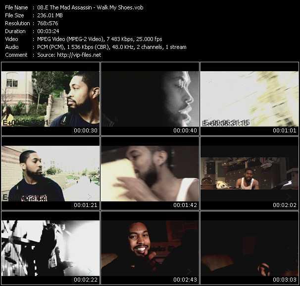 E The Mad Assassin video screenshot