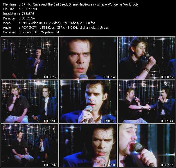 Nick Cave And The Bad Seeds With Shane MacGowan video screenshot