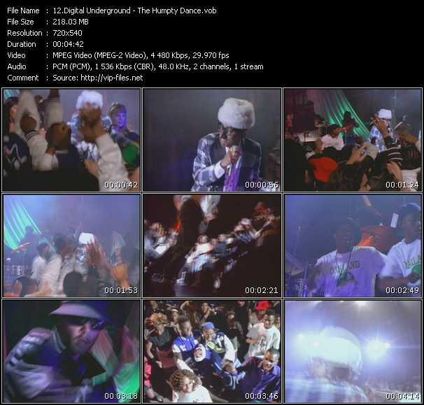 video The Humpty Dance screen
