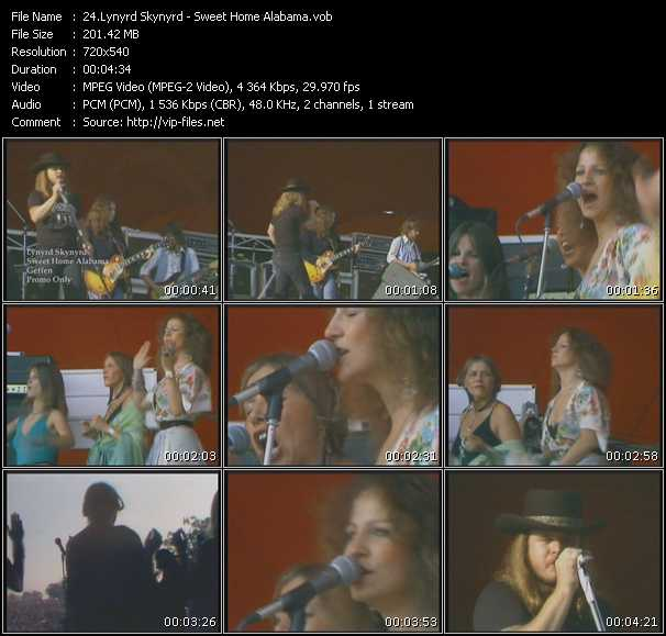 Lynyrd Skynyrd video screenshot