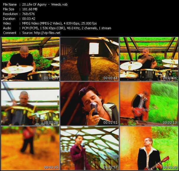 Life Of Agony video screenshot