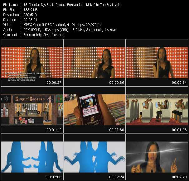 Phunkin Djs Feat. Pamela Fernandez video screenshot