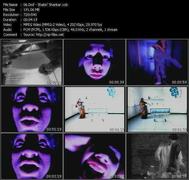 Dmf video screenshot