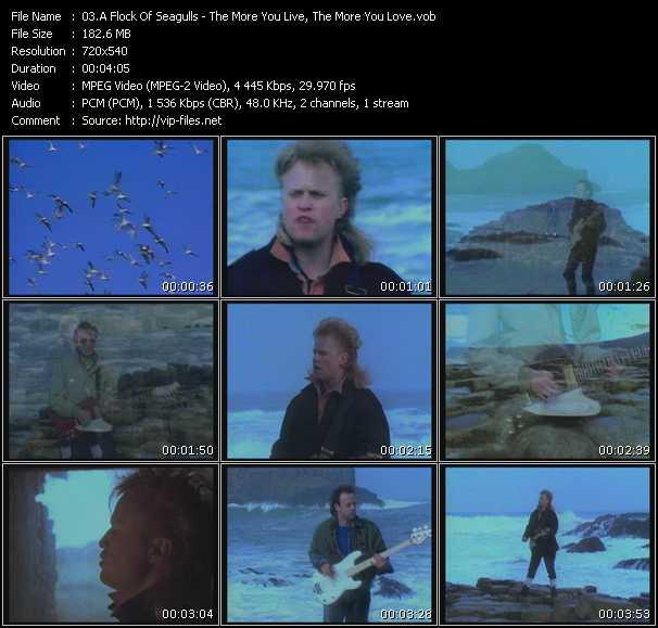 A Flock Of Seagulls video screenshot