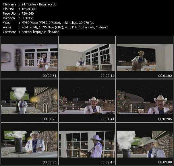 Tigrillos video screenshot