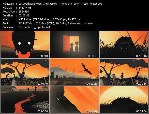 video The Veldt (Tommy Trash Remix) screen