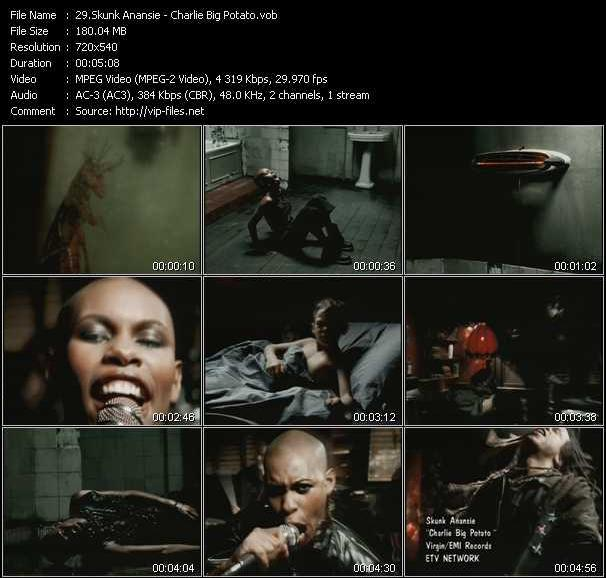 Skunk Anansie video screenshot