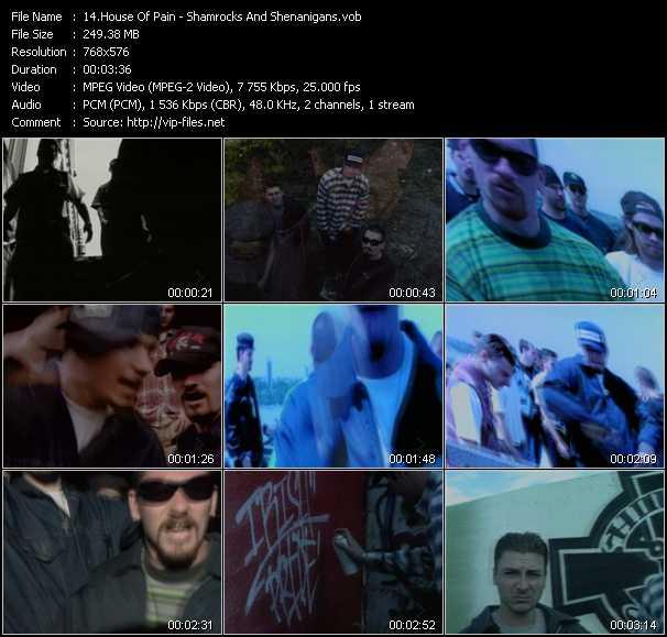 video Shamrocks And Shenanigans screen