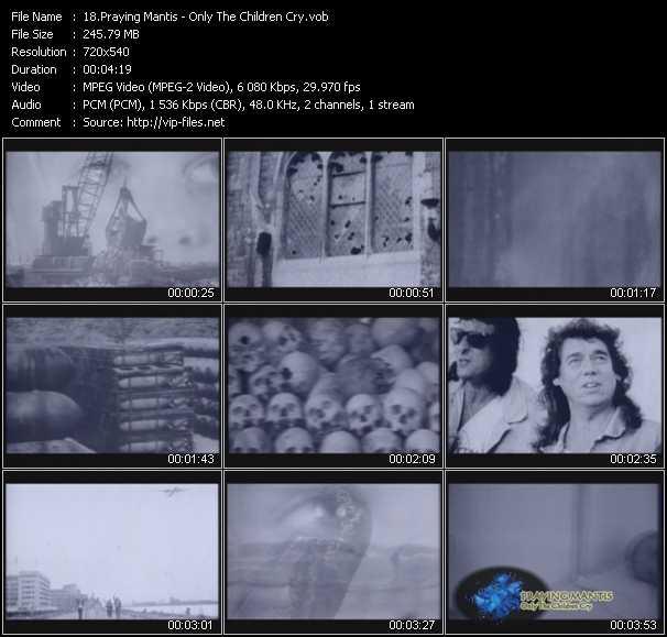 Praying Mantis video screenshot