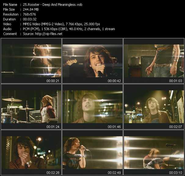 Rooster video screenshot