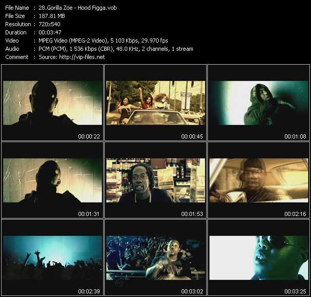 Gorilla Zoe video screenshot