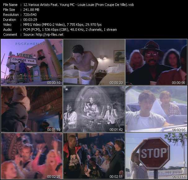 Various Artists Feat. Young MC video screenshot
