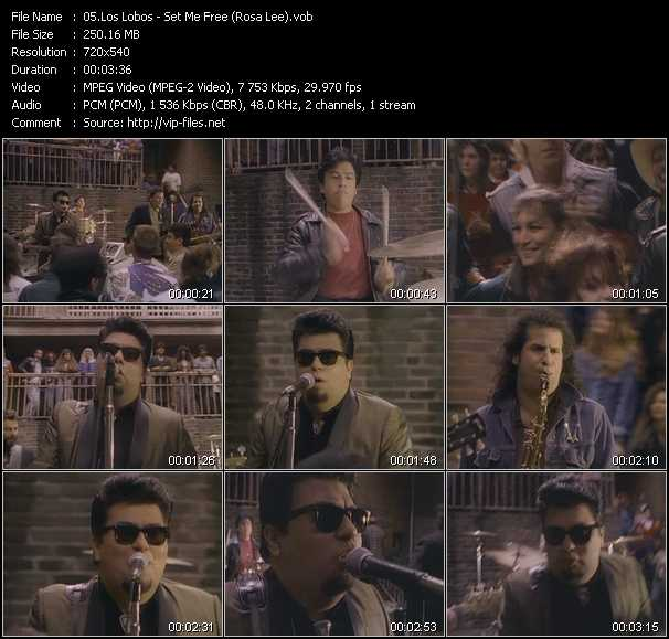 Los Lobos video screenshot