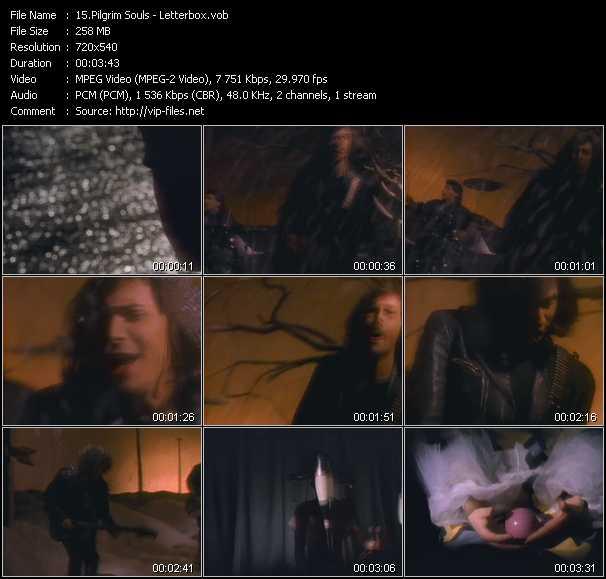 Pilgrim Souls video screenshot