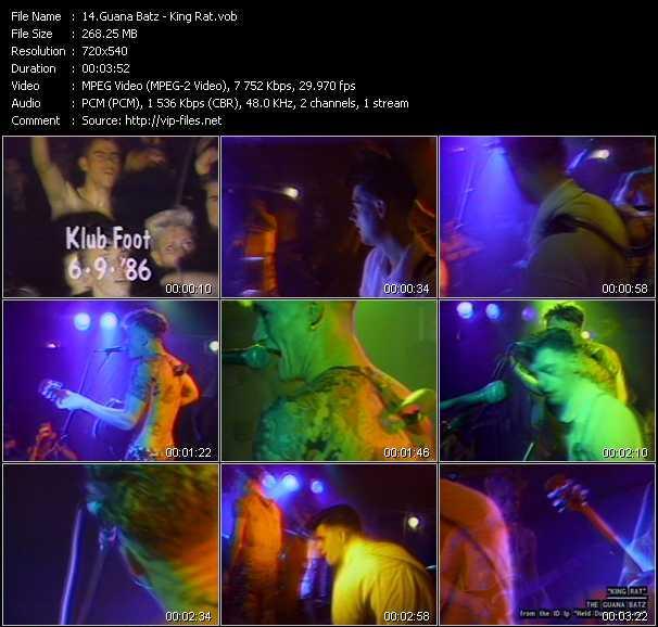 Guana Batz video screenshot