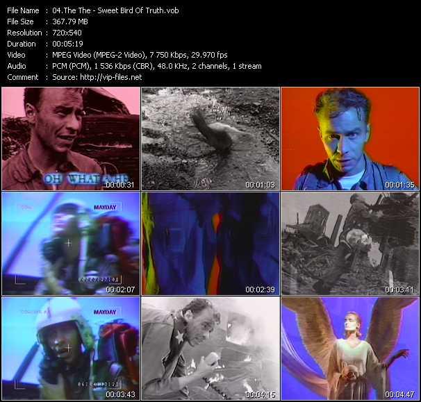 video Sweet Bird Of Truth screen