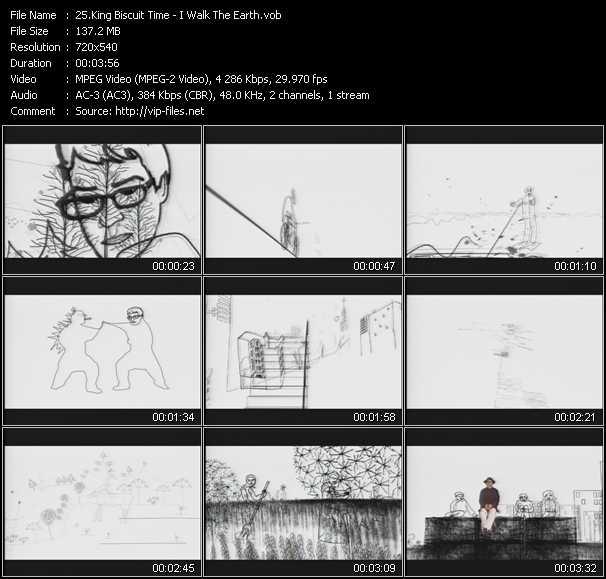 King Biscuit Time video screenshot