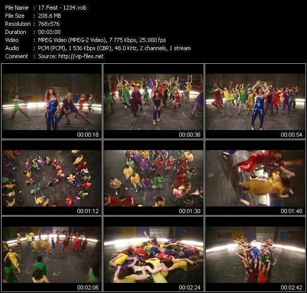 Feist video screenshot