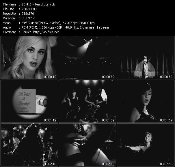 411 video screenshot