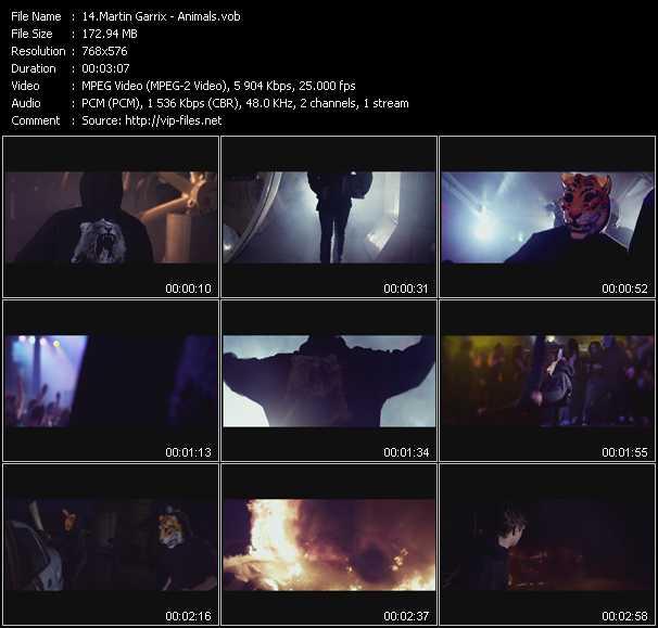 Martin Garrix video screenshot