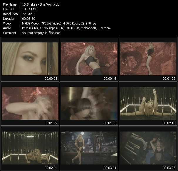 video She Wolf screen