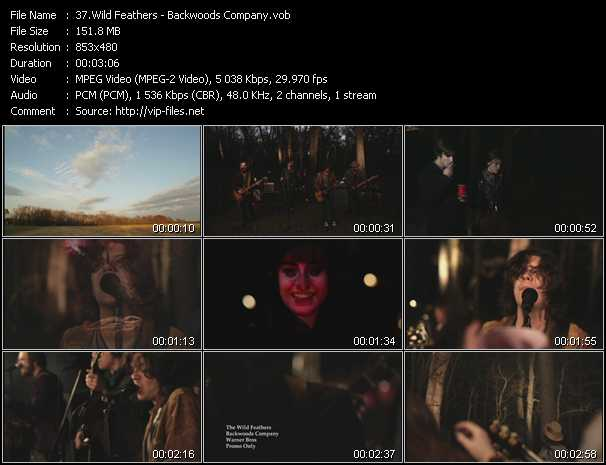 Wild Feathers video screenshot