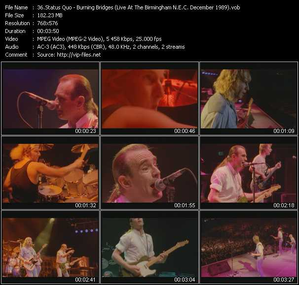 video Burning Bridges (Live At The Birmingham N.E.C. December 1989) screen