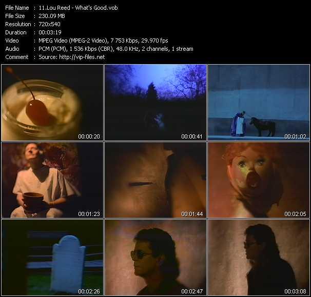 Lou Reed video screenshot