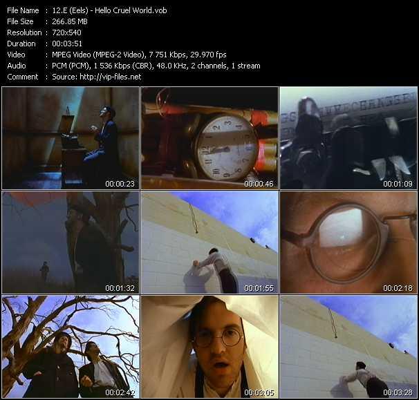 E (Eels) video screenshot