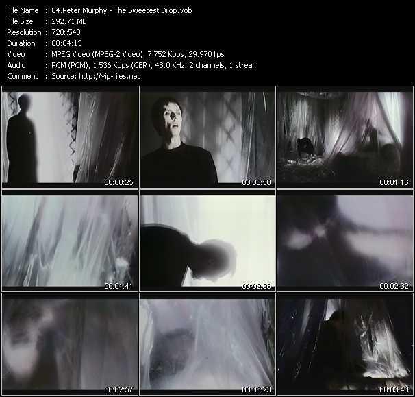 Peter Murphy video screenshot