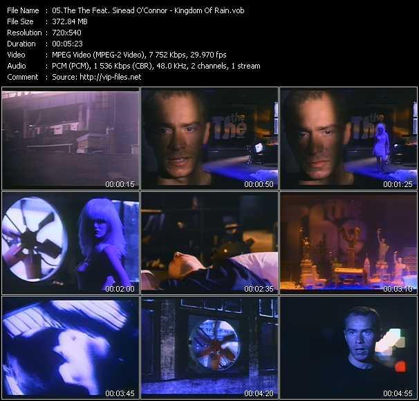 video Kingdom Of Rain screen