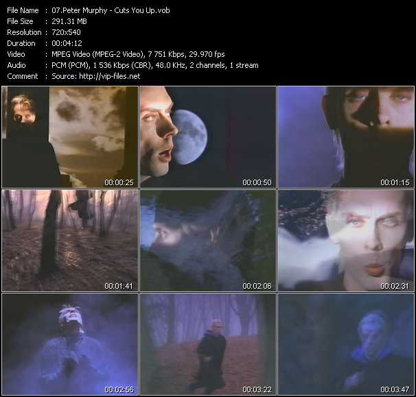 Peter Murphy video screenshot