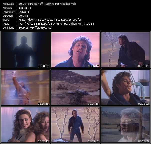 David Hasselhoff video screenshot