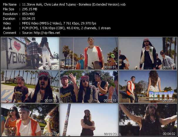 Steve Aoki, Chris Lake And Tujamo video screenshot