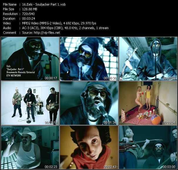 Eels video screenshot