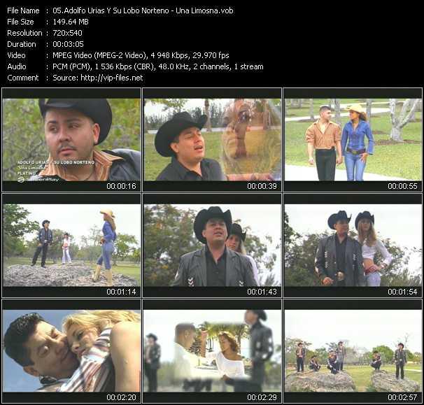 Adolfo Urias Y Su Lobo Norteno video screenshot