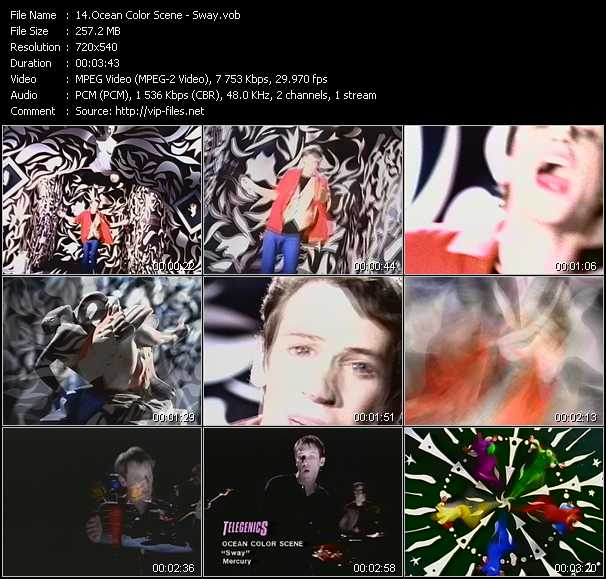 Ocean Colour Scene video screenshot