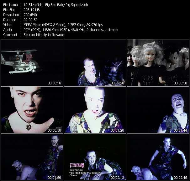 Silverfish video screenshot