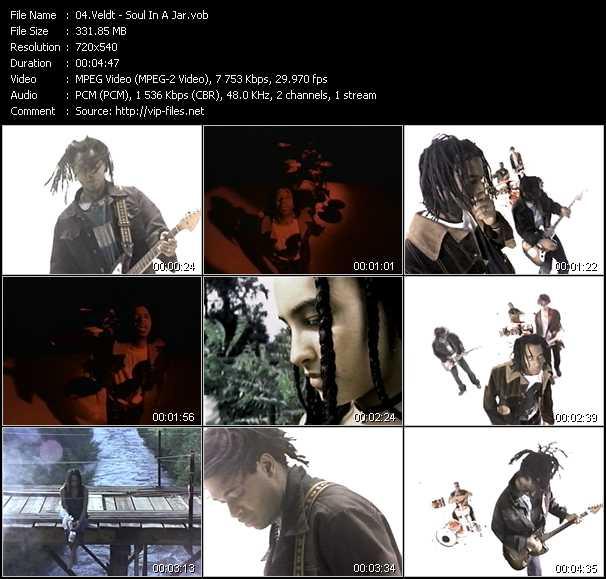Veldt video screenshot
