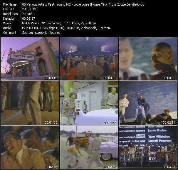 Various Artists Feat. Young MC video screenshot
