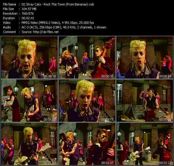 Stray Cats video screenshot