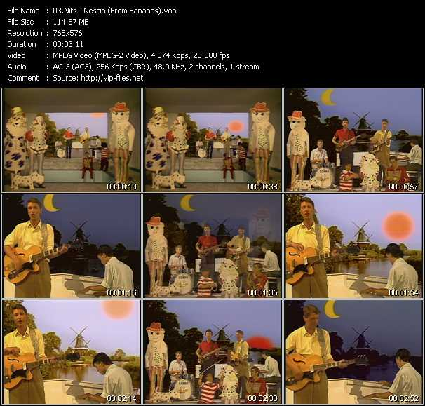 Nits video screenshot