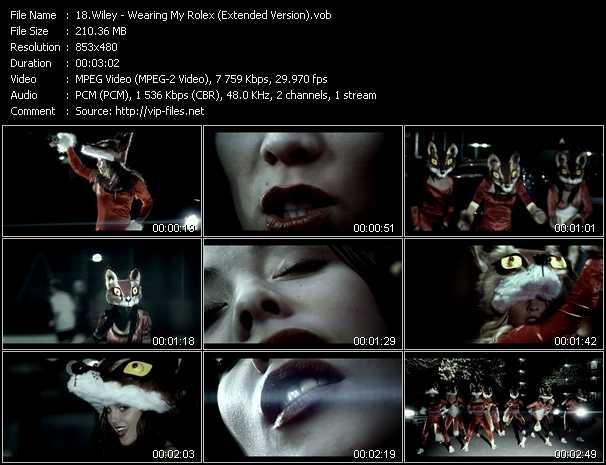 Wiley video screenshot