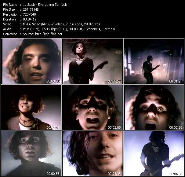 Bush video screenshot